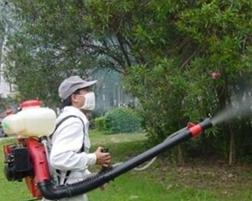 重庆园林杀虫