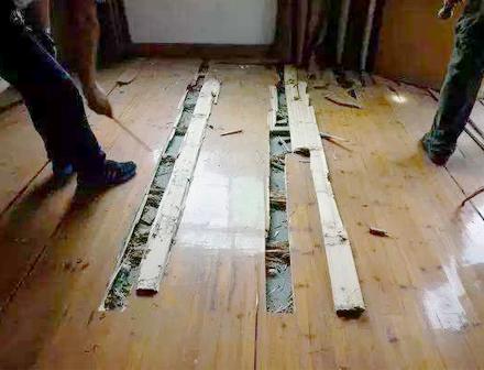 重庆家庭灭白蚁施工案例