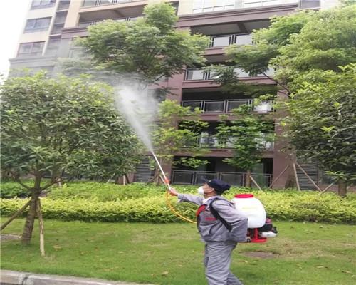 园区灭蚊蝇